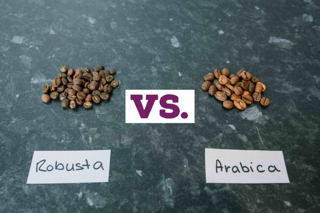 Arabica vs. Robusta beans on a table