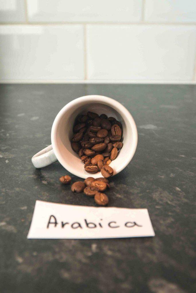 arabica beans in a cup
